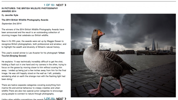 British Wildlife Photogrpahy Awards